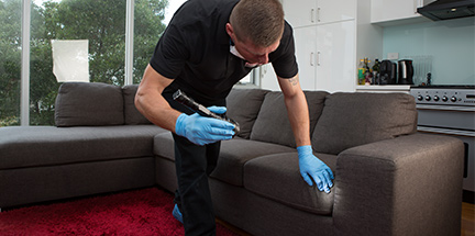 Pest controller preventing crawling pests