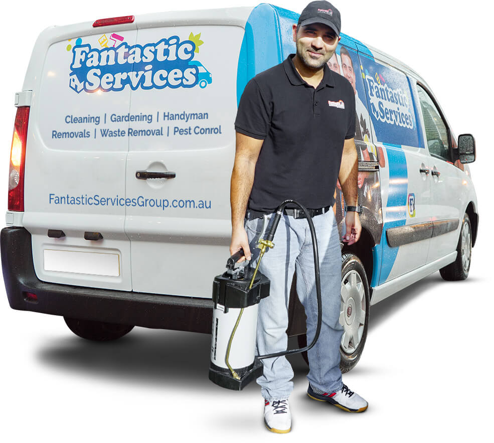 Meet the Fantastic Pest Controllers in Perth