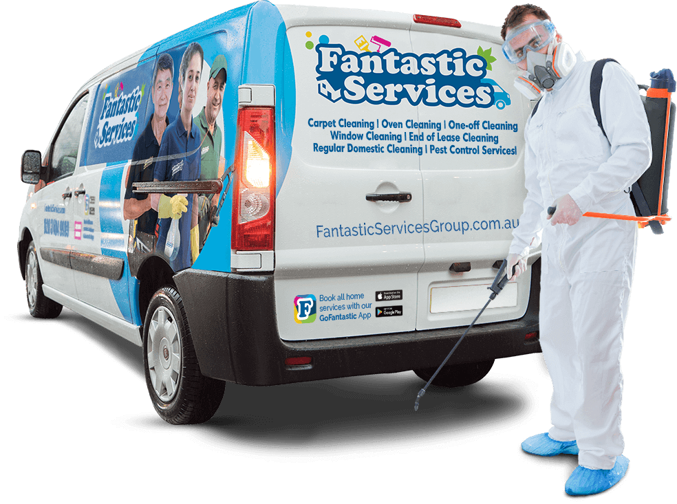 Why Our Pest Control Services in Sydney Might Be Your Best Choice
